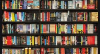 Library bookshelf Nov 20 resized